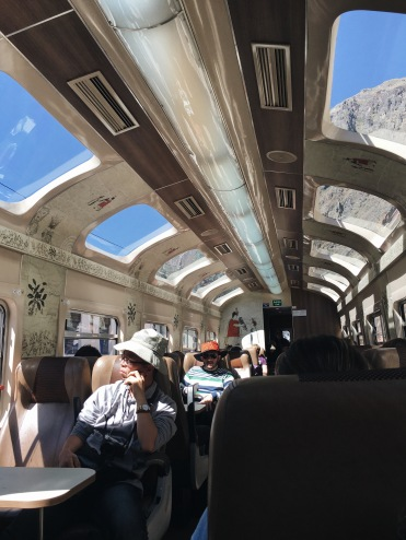 PeruRail: The Expedition interior